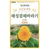 화훼 허브씨앗 왜성겹해바라기 금황
