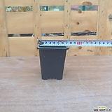 플라스틱분 1호7.5cm (10+1)플분