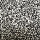최고급영양제(日本직进口원예Myrtillocactus geometrizans cv. fukurokuryuzinboku료)종이컵5개