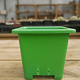사각플분 3호 (녹색)10+1|