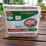 소나무집 34. 수태 75g / 난초전용 분갈이 흙 식물영양제 걸음 개화촉진제|