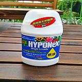 소나무집 42. 하이포넥스 하이그레이드 원액 180㎖ / 식물영양제 분갈이흙 걸음 개화촉진제|