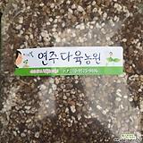 하월시아분갈이흙-2(영양흙)