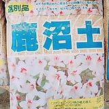 녹소토 세립  16리터 신상품 (삽목용) 리톱스,다육이,하월시아|haworthia