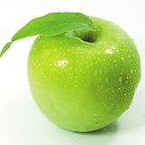 베이비키위베리 프리미엄 특품♥월동가능 자가수정♥혼자서도 열매 맺어요.♥키위 키위베리 베이비키위 넝쿨 열매
