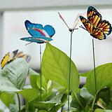 입체나비 화분픽♥가든픽 데코픽♥화분장식 화분 데코레이션♥입체나비 3D 나비|