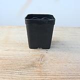5.7cm물결플라스틱花盆1호(10+1/사각플분파종분플분)플라스틱花盆