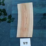 통나무슬라이스(박쥐란헌팅트로피,기타diy용도)0716xp-3|