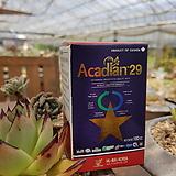 아카디안29 친환경영양제 다육영양제 100ml