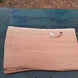 통나무슬라이스(박쥐란헌팅트로피,기타diy용도)자작나무0502spxp1|