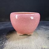 수제화분(백광분)53|Handmade Flower pot
