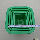 녹색플분2~6호선택(동일품10+1/플라스틱)