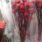 프리저브드 장미꽃다발(선물용박스포장)|