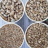 세척마사토(씻은마사토)한포 