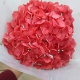 프리저브드 수국|Hydrangea macrophylla