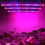 다육이 월동준비♥튜브 타입 LED 세트♥식물생장 LED♥다육이등 다육|