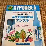 하이포넥스(일제앰플)레이쇼앰플(꽃과채소) 생육왕성하게하고 꽃잎과색깔을 선명하게 해줘요|