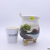 수제화분(반값할인) 491|Handmade Flower pot