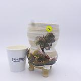 수제화분(반값할인)  541|Handmade Flower pot