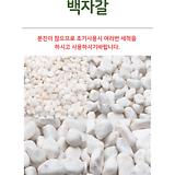 백자갈 하얀돌 흰색자갈 흰색돌 하얀자갈 조경돌 어항자갈 조경석 화분장식석 장식돌|