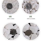 흰색돌 소포장 조경석 조경돌 백자갈 하얀돌 흰색자갈 하얀자갈 어항자갈 화분장식석 장식돌|
