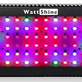 300W 초강력 식물생장 LED♥다육이 실내재배 월동 필수품♥Full Spectrum♥고출력 프로페셔널용♥식물공장등급 인공태양♥다육이등 다육|