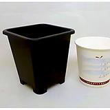 플분도매 플라스틱화분 8.5cm플분 1.5호1box(350개)|