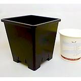 플분도매 플라스틱화분 10cm플분 2호1box(200개)|