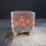 수제화분(라인분)319|Handmade Flower pot