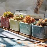 에바[다] 다육이화분 인테리어화분 수제화분 행복상회 행복한꽃그릇