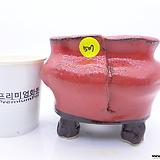 수제화분(반값특가)  507|Handmade Flower pot
