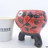 수제화분(반값특가) 1877|Handmade Flower pot
