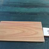 우드슬라이스(느티나무)xp-4003|Echeveria Tina