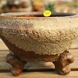 수제화분107(창.군생.모듬심기좋아요)|Handmade Flower pot