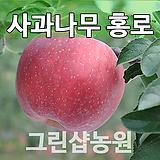 사과홍로묘목 사과나무홍로 접목 1년|Echeveria Hongro