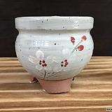 국산수제화분-8374 (랜덤발송)|Handmade Flower pot