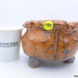 수제화분(반값특가) 2785|Handmade Flower pot