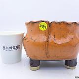 수제화분(반값특가) 2787|Handmade Flower pot