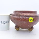 수제화분(반값특가) 2816|Handmade Flower pot