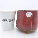 수제화분(반값특가) 65|Handmade Flower pot