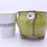 수제화분(반값특가) 62|Handmade Flower pot