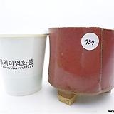 수제화분(반값특가) 737|Handmade Flower pot