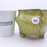 수제화분(반값특가) 734|Handmade Flower pot