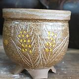 수제화분 2752|Handmade Flower pot