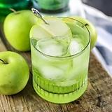 아오리 왜성 사과나무 화분상품♥왜성사과♥풋사과♥사과나무|