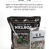 넬솔 네루쏘일 다육아트 흙|