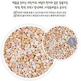 보석돌 자갈 돌 조경석 수경재배 화분장식 어항|