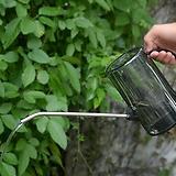 명성다육 다육식물 모음