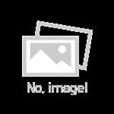 상록잔디패랭이/ 야생화 / 노지월동 / 주말농장 / 관상용 / 비닐포트|