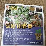 [한정수량]대용량 20리터 산야초 로얄산야초|